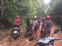 alquilar motos vietnam